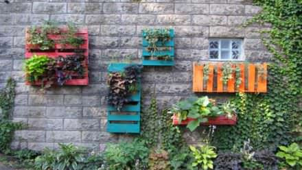 Pallets Wall Gardens