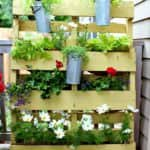 Small Space Vertical Garden with Pallet