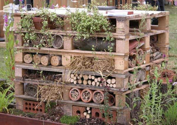 Pallet as Optimized Habitat for Insects Animal Pallet Houses & Pallet Supplies
