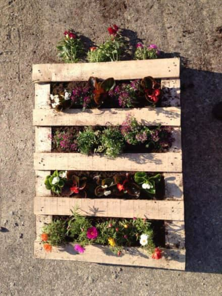 3 Steps to Prepare Your Vertical Pallet Planter