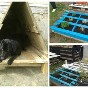 Pallets Garden Decoration & Dog House