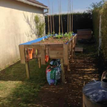 Pallets Vegetable Garden For Gardeners With Backaches