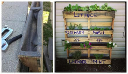 Tips For Keeping Dirt Inside Pallet Planters