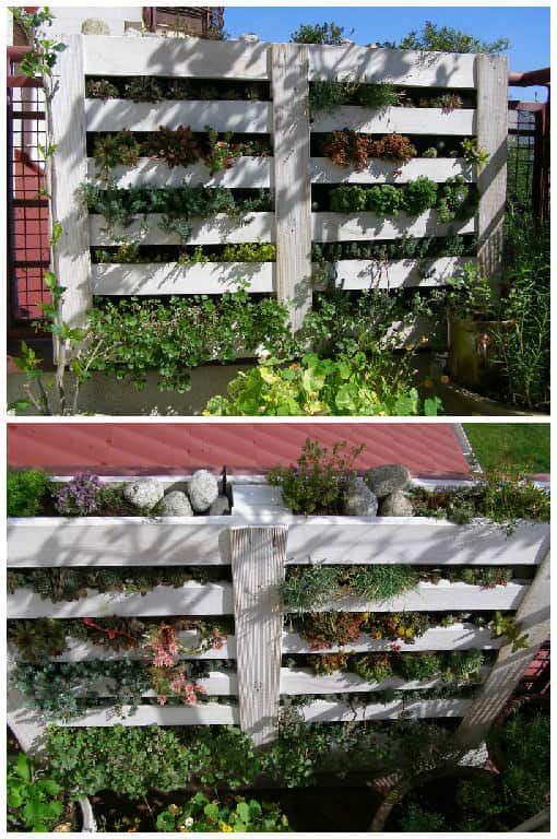 upcycled pallet into vertical garden 1001 pallets