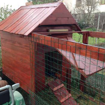 Handmade Chicken Coop With Recycled Pallets / Poulailler En Palettes Fait Main