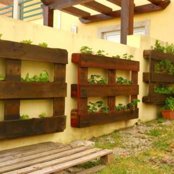 Pallets Used as Vertical Planters On An Outdoor Wall