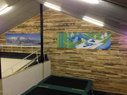 New Wall At An Indoor Ski-school In Holland