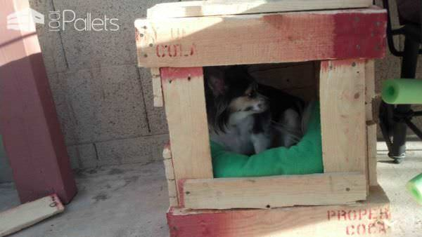 Pallet Dog House Animal Houses & Supplies
