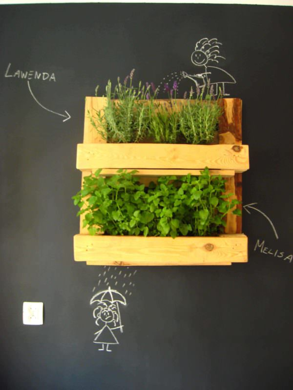 Pallet Herb Rack Pallet Shelves & Pallet Coat Hangers