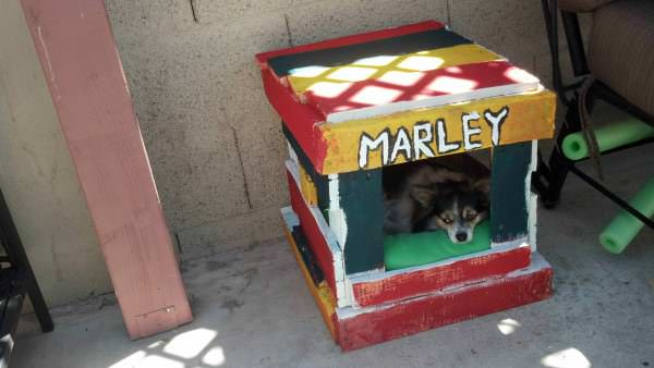 IMG 20130714 140948 955 600x338 Pallet Dog House in diy pallet ideas  with pallet House Doghouse DIY