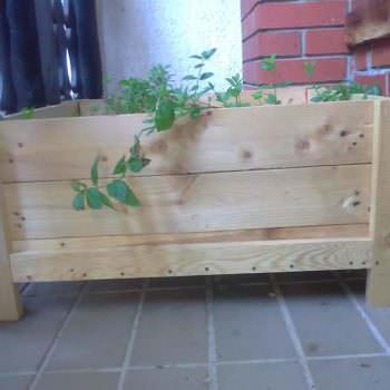 Herbs Planter Box