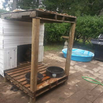 Pallets Doghouse