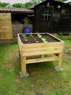 Raised Vegetable Planter