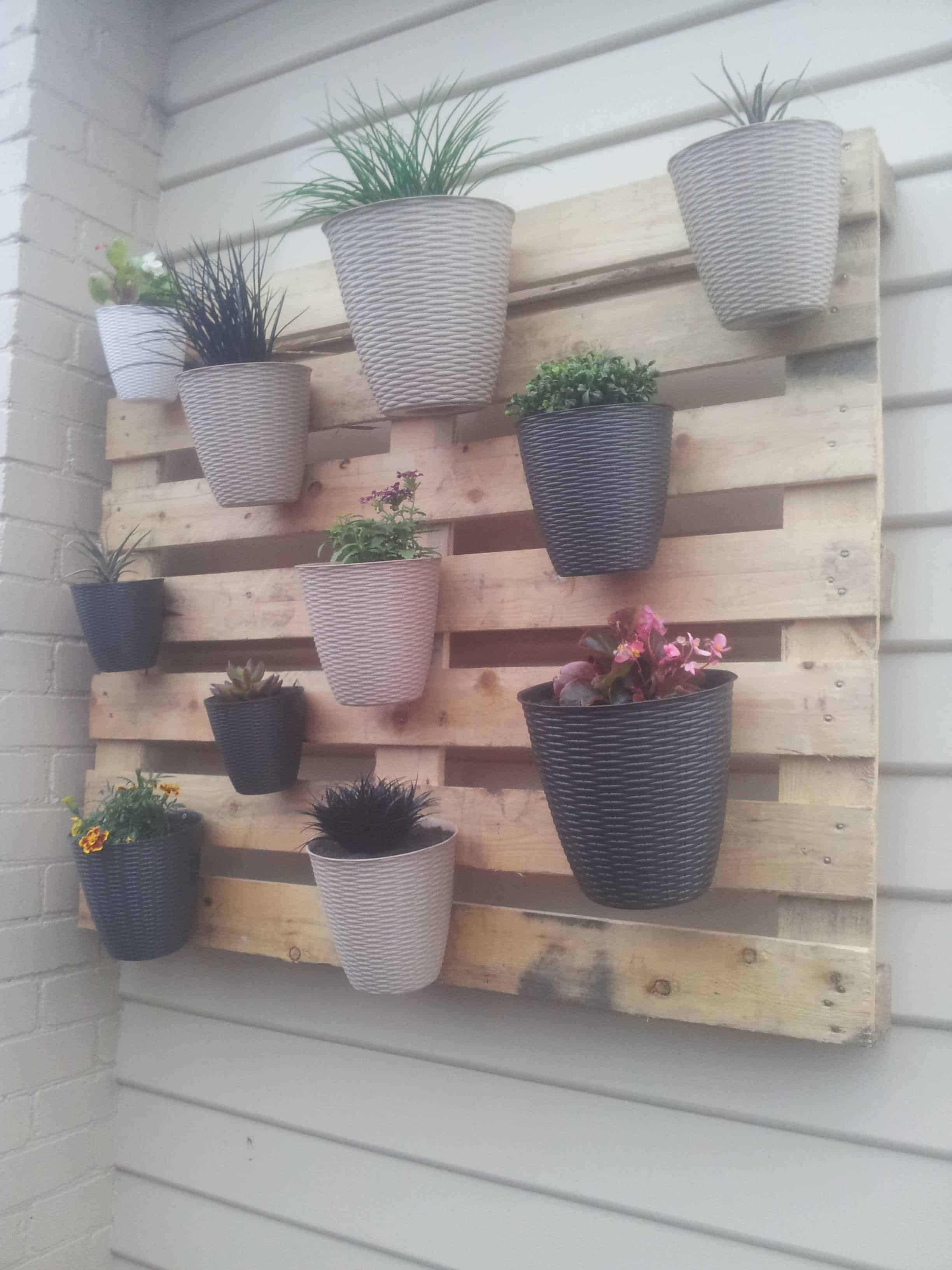 My first but not last pallet project a vertical garden for Patio exterieur en bois