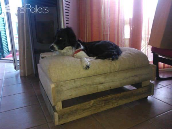 Cuccia Vintage in Pallets / Dog Bed With Pallets Animal Pallet Houses & Pallet Supplies