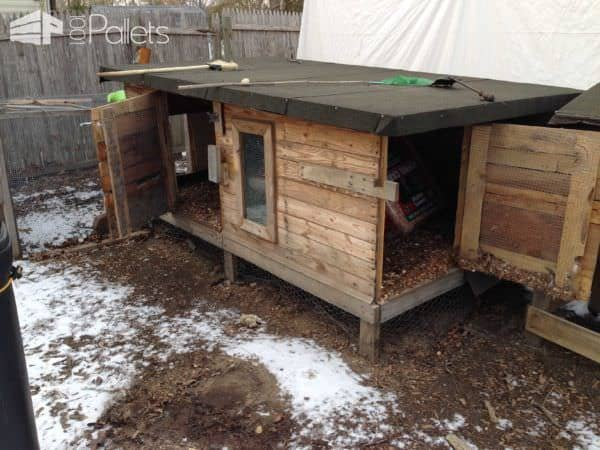 Pallet Chicken Coop Animal Pallet Houses & Pallet Supplies