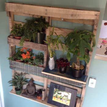 Pallet Shelf for Plants