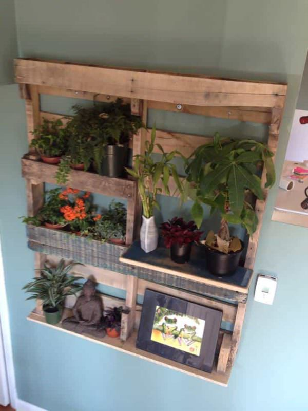 Pallet Shelf for Plants Pallet Shelves & Pallet Coat Hangers