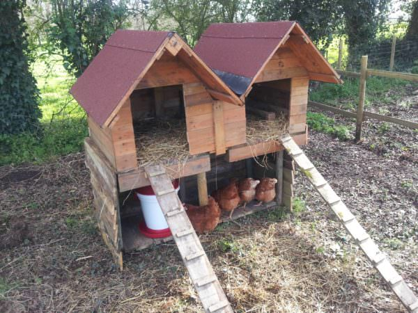 Double Pallet Chicken Coop Animal Pallet Houses & Pallet Supplies