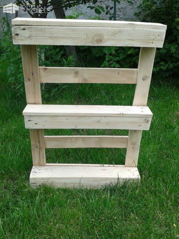 Dvd Shelf With Half Pallet Pallet Shelves & Pallet Coat Hangers