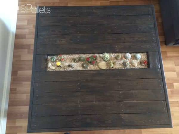 Table Basse Avec Jardin De Cactus / Pallet Coffee Table With Cactus Planter Pallet Coffee Tables