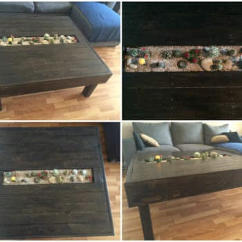 Table Basse Avec Jardin De Cactus / Pallet Coffee Table With Cactus Planter