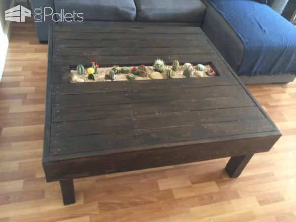 Table basse avec jardin de cactus pallet coffee table for Palette table de jardin
