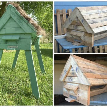 Hive With Repurposed Pallets / Ruche En Palettes