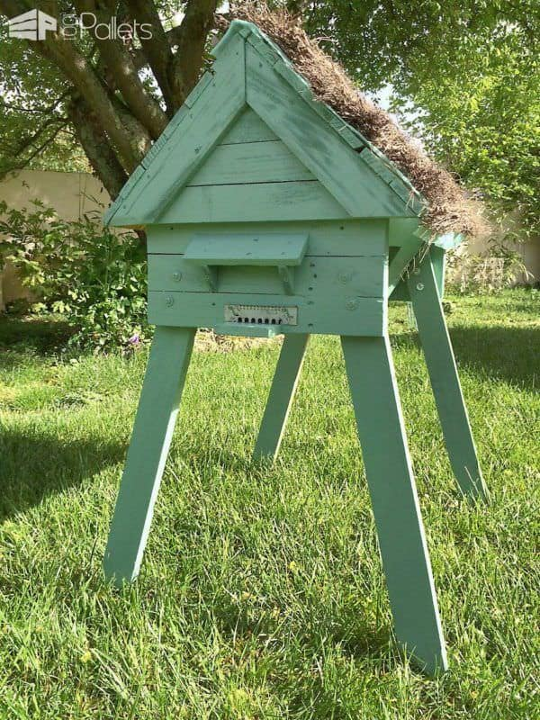 Hive With Repurposed Pallets / Ruche En Palettes Animal Pallet Houses & Pallet Supplies