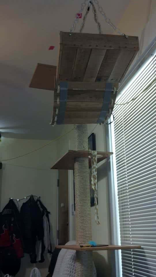 Diy: Pallet Cat Tree Provides Kitties Some Fun! Animal Pallet Houses & Pallet Supplies