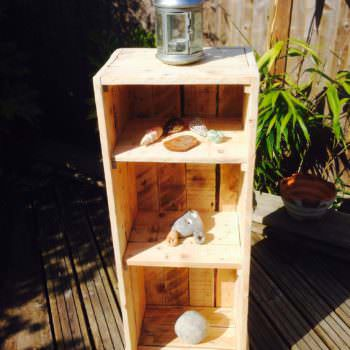 My First Attempt: A Bathroom Cabinet