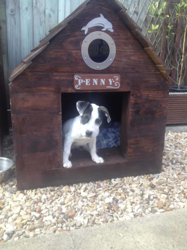 Pallet Dog House Animal Pallet Houses & Pallet Supplies Pallet Sheds, Cabins, Huts & Playhouses