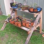 Pallet Plants Stand
