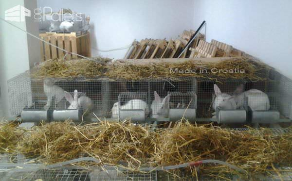 Rabbit House Made From Pallets In Croatia Animal Pallet Houses & Pallet Supplies
