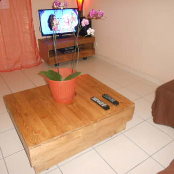 Meuble TV En Palettes / Pallet TV Stand & Coffee Table