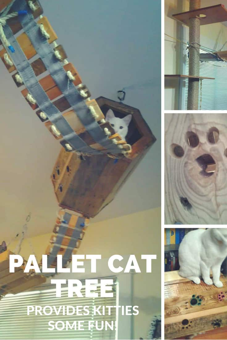 Diy Pallet Cat Tree Provides Kitties Some Fun 1001 Pallets