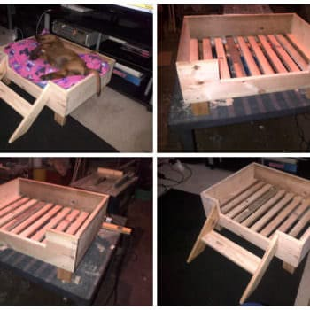 Doggy Pallet Bed Made From Repurposed Pallet Wood