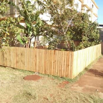 Backyard Pallets Fence