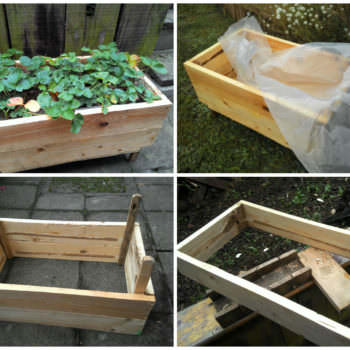 Wooden Box For Strawberries