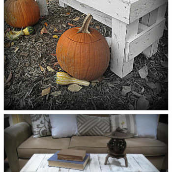 Rustic Bench / Coffee Table