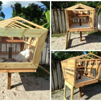 This Is My Pallet Version of the Chicken Coop Called the Coopsicle
