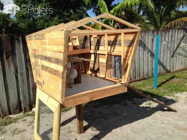 This Is My Pallet Version of the Chicken Coop Called the Coopsicle Animal Pallet Houses & Pallet Supplies