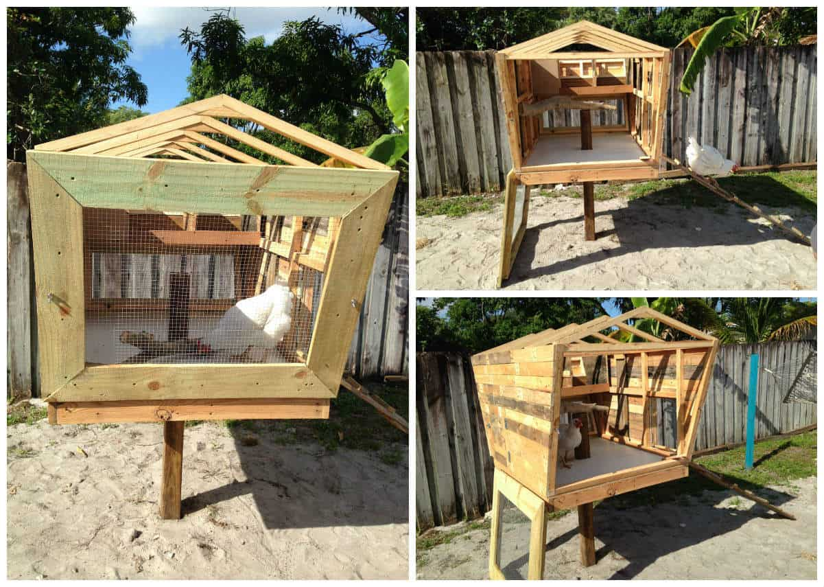 This Is My Pallet Version of the Chicken Coop Called the ...