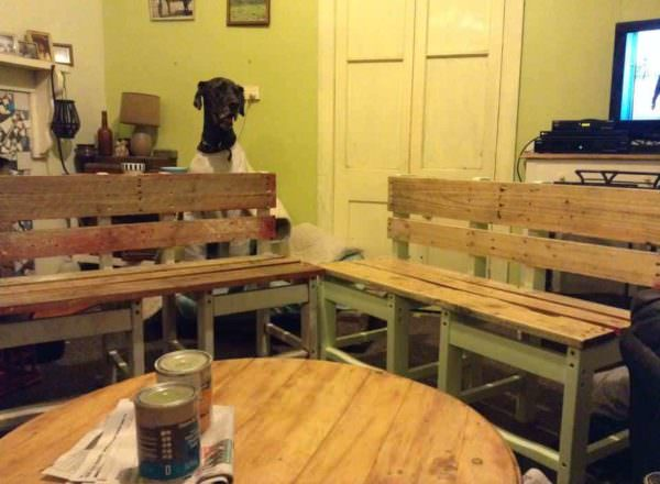 Two Old Chairs & Wooden Pallets Become Benches Pallet Benches, Pallet Chairs & Stools