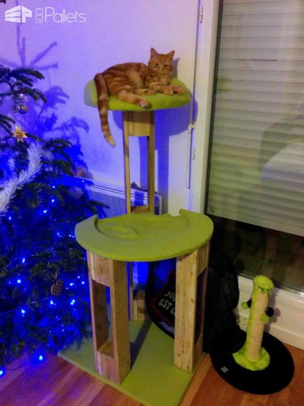 Arbre à Chat / Pallet Scratching Tree Animal Pallet Houses & Pallet Supplies