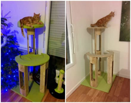 Arbre à Chat / Pallet Scratching Tree