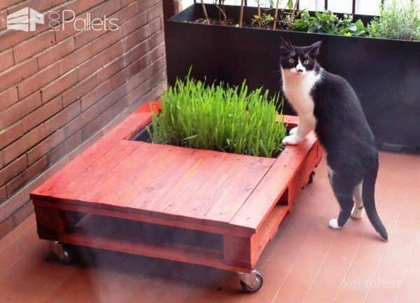 Diy: Chatable Pallet Coffee Table With Mini Garden Pallet Coffee Tables