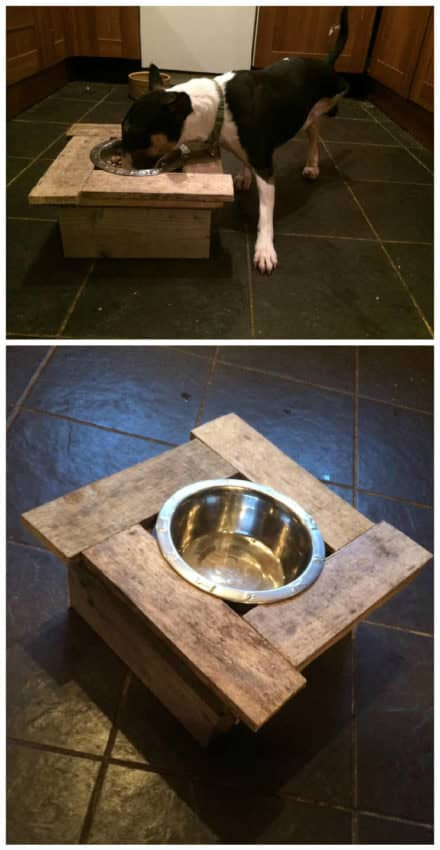 Pallet Doggy Dinner Table