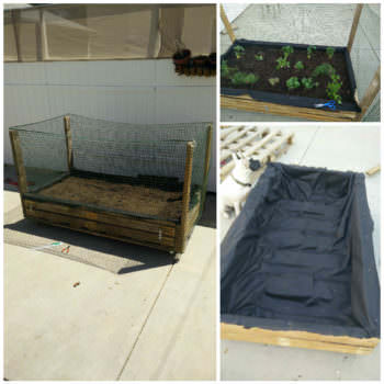 Vegetables & Herbs Planter Pallet