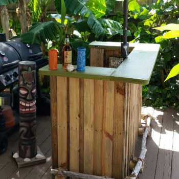 Backyard Bbq Tiki Bar